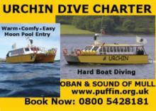 Urchin Dive Charter