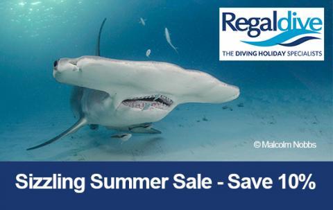 Regaldive summer sale