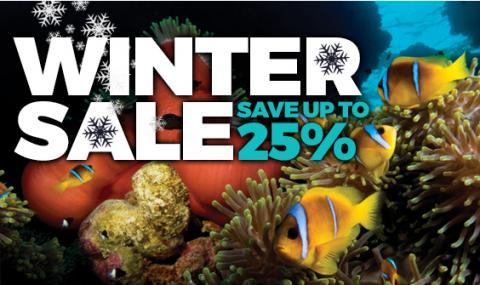 blue o two winter sale